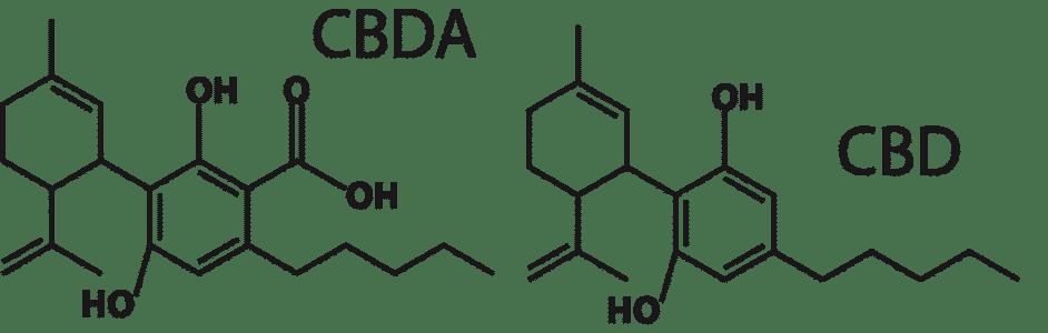 cbd cannabidiol cbda cannabidiol acid